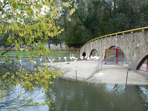 zoopark2
